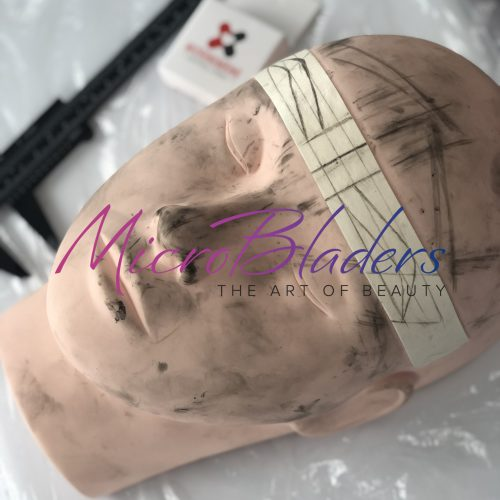 Microblading Certification Training Practice Head at MicroBladers Las Vegas